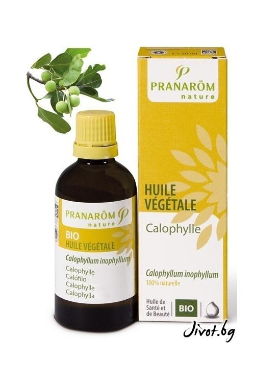 Растително масло Pranarom Калофила