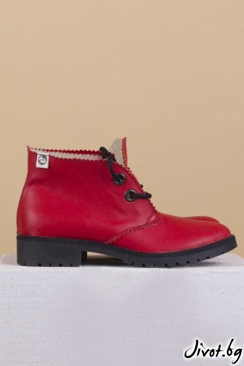 Дамски ръчно декорирани кожени обувки Red Clark / PESH ART